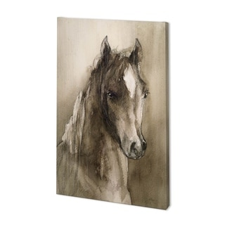 Mercana Horse Portrait I (35 x 54) Made to Order Canvas Art