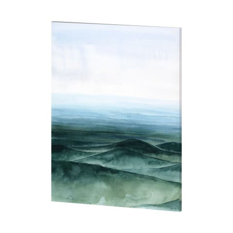 Mercana Plane View II (42 x 54) Made to Order Canvas Art