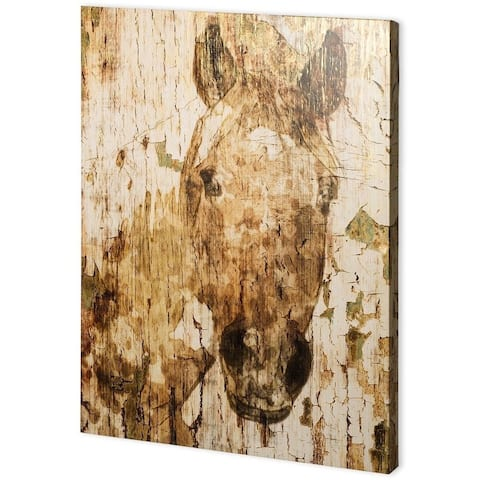 Mercana Champagne Horse I (41 x 55) Made to Order Canvas Art