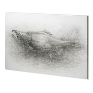 Mercana Salmon I (52 x 38) Made to Order Canvas Art