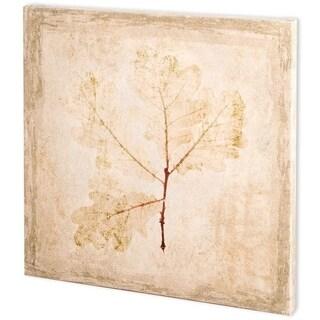Mercana Stone Leaf III (44 x 44) Made to Order Canvas Art