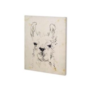 Mercana Llama Portrait I (28 x 35) Made to Order Canvas Art