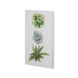 Mercana Custom Row of Succulents II (30 x 53) Made to Order Canvas Art