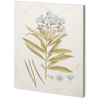 Mercana Bashful Blue Florals III (44 x 55) Made to Order Canvas Art