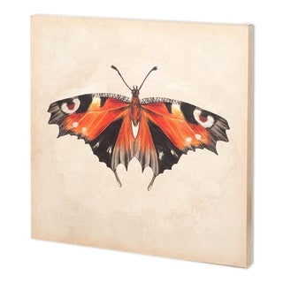 Mercana Butterfly Study V (26 x 52 )(SET2) Made to Order Canvas Art