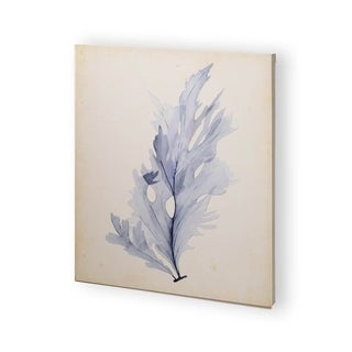 Mercana Watercolor Sea Grass VI (30 x 37) Made to Order Canvas Art