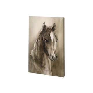 Mercana Horse Portrait I (24 x 37) Made to Order Canvas Art