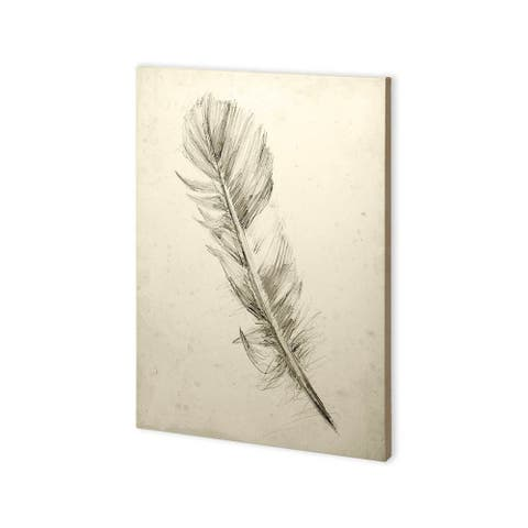 Mercana Feather Sketch I (30 x 43) Made to Order Canvas Art