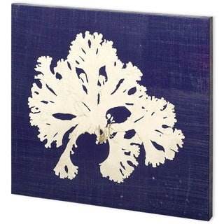Mercana Seaweed on Navy IV (44 x 44) Made to Order Canvas Art