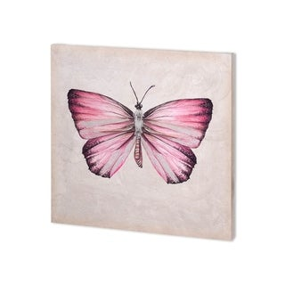 Mercana Butterfly Study IV (30 x 30 ) Made to Order Canvas Art