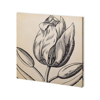 Link to Mercana Graphic Floral VI (30 x 30) Made to Order Canvas Art Similar Items in Specialty Material Art