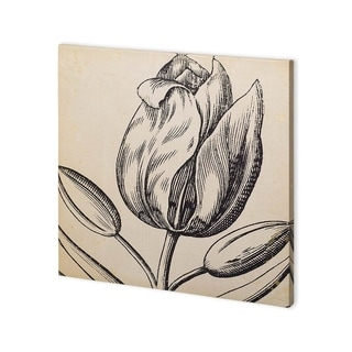 Mercana Graphic Floral VI (30 x 30) Made to Order Canvas Art