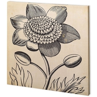 Mercana Graphic Floral III (44 x 44) Made to Order Canvas Art