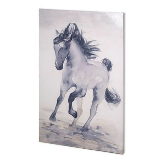 Mercana Windancer II (38 x 56) Made to Order Canvas Art