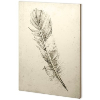 Mercana Feather Sketch I (44 x 63) Made to Order Canvas Art
