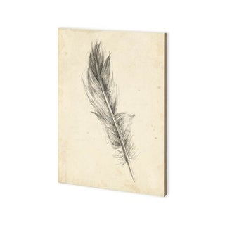 Mercana Feather Sketch IV (30 x 43) Made to Order Canvas Art