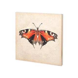 Mercana Butterfly Study V (30 x 30 ) Made to Order Canvas Art