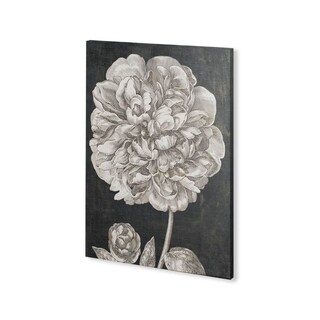Mercana Dramatic Peony II (30 x 40) Made to Order Canvas Art