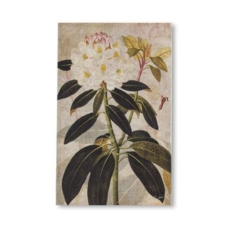 Mercana Rhododendron I (MC) (24 X 38) Made to Order Canvas Art