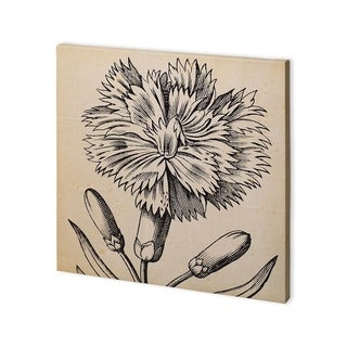 Mercana Graphic Floral IV (30 x 30) Made to Order Canvas Art