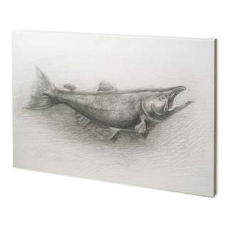 Mercana Salmon II (52 x 38) Made to Order Canvas Art