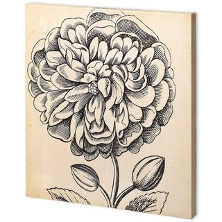 Mercana Graphic Floral V (44 x 44) Made to Order Canvas Art