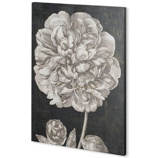 Mercana Dramatic Peony II (44 x 60) Made to Order Canvas Art