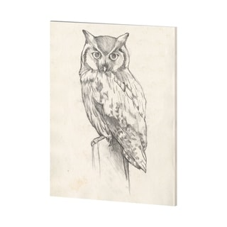 Mercana Owl Portrait II (38 x 48) Made to Order Canvas Art