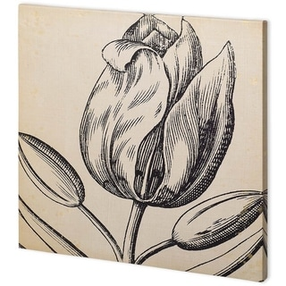 Mercana Graphic Floral VI (44 x 44) Made to Order Canvas Art