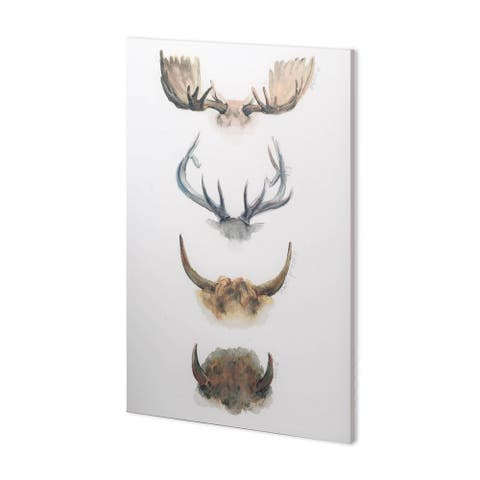 Mercana Horn & Tail Study II (38 x 56) Made to Order Canvas Art - Multi