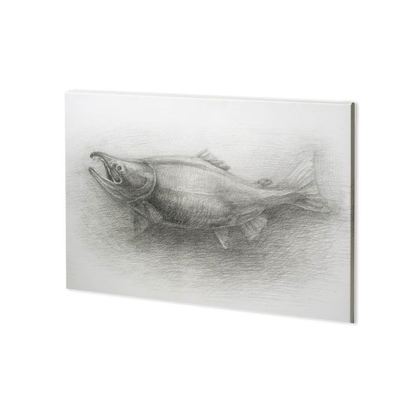 Mercana Salmon I (38 x 28) Made to Order Canvas Art