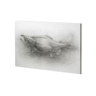 Mercana Salmon I (38 x 28) Made to Order Canvas Art