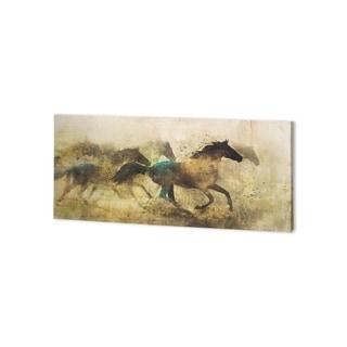 Mercana Horses, Wild And Free I (44 x 22 ) Made to Order Canvas Art
