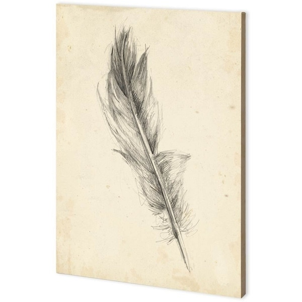 Mercana Feather Sketch IV (44 x 63) Made to Order Canvas Art