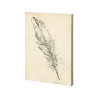 Mercana Feather Sketch III (30 x 43) Made to Order Canvas Art