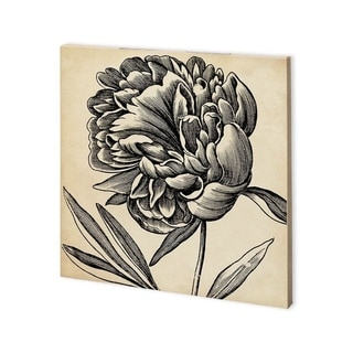 Mercana Graphic Floral II (30 x 30) Made to Order Canvas Art
