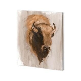 Mercana Western American Animal Study III (30 x 37) Made to Order Canvas Art