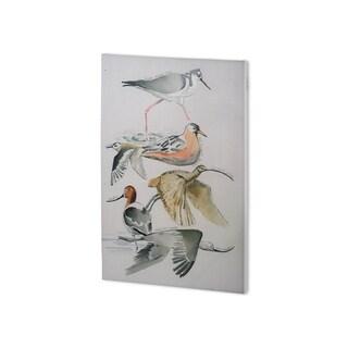 Mercana Bird Study I (26 x 38 ) Made to Order Canvas Art