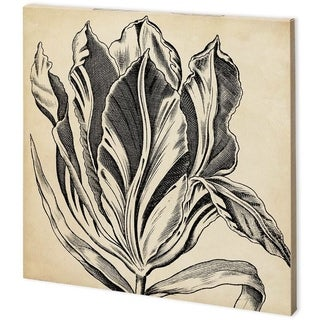 Mercana Graphic Floral I (44 x 44) Made to Order Canvas Art
