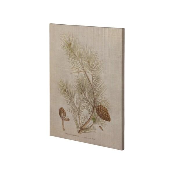 Mercana Herbal Botanical XIII (28 x 38) Made to Order Canvas Art