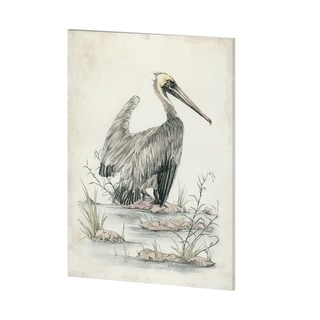 Mercana Brown Pelican (36 x 48) Made to Order Canvas Art