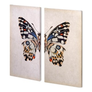 Mercana Butterfly Study II (26 x 52 )(SET 2 Made to Order Canvas Art