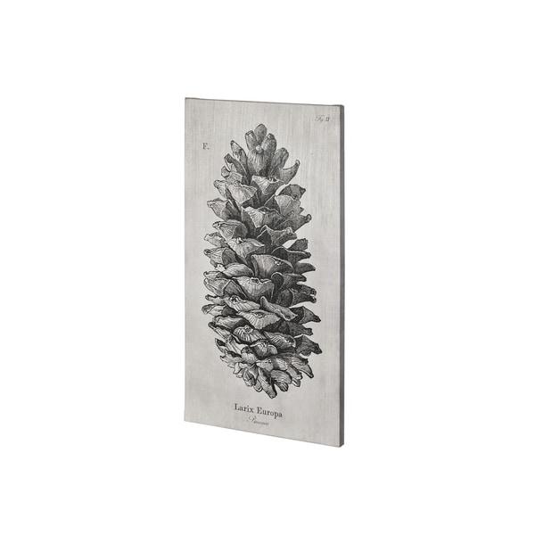 Mercana Larix Europa (22 x 44) Made to Order Canvas Art