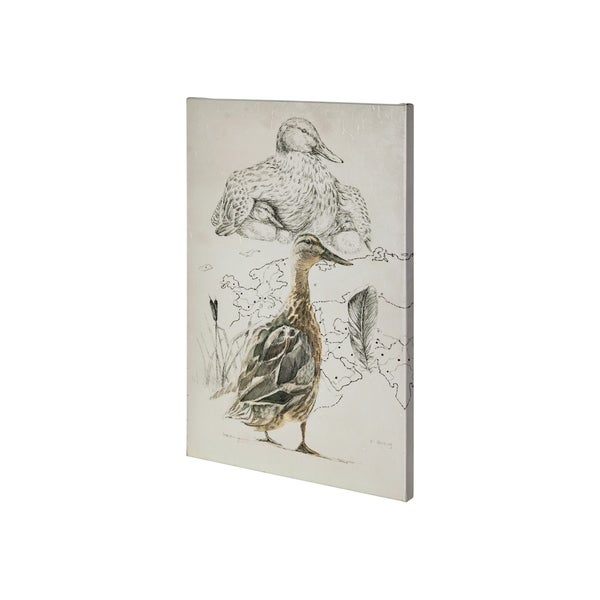 Mercana Duck Study I (28 x 42) Made to Order Canvas Art