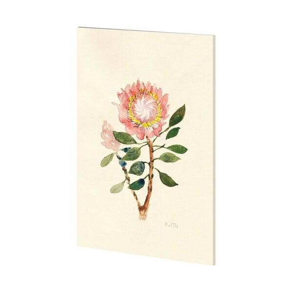 Mercana Fynbos (36 x 54) Made to Order Canvas Art