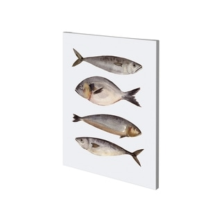 Mercana Four Fish II (27 x 36) Made to Order Canvas Art