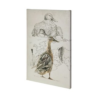 Mercana Duck Study I (36 x 54) Made to Order Canvas Art