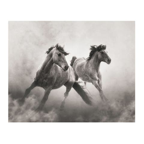 Christopher Knight Collection In The The Dust , Canvas Wall Art - Multi-color