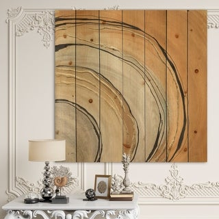 Designart 'Glam Canion II' Modern & Contemporary Print on Natural Pine Wood - Multi-color
