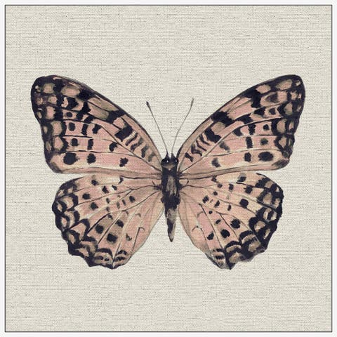 Marmont Hill - Handmade Pink and Black Butterfly II Floater Framed Print on Canvas